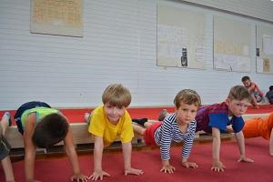 Польза гимнастики для детей, польза спортивной гимнастики